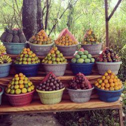 localfruit